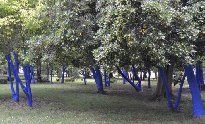 Girard-Perregaux / Blue Forest