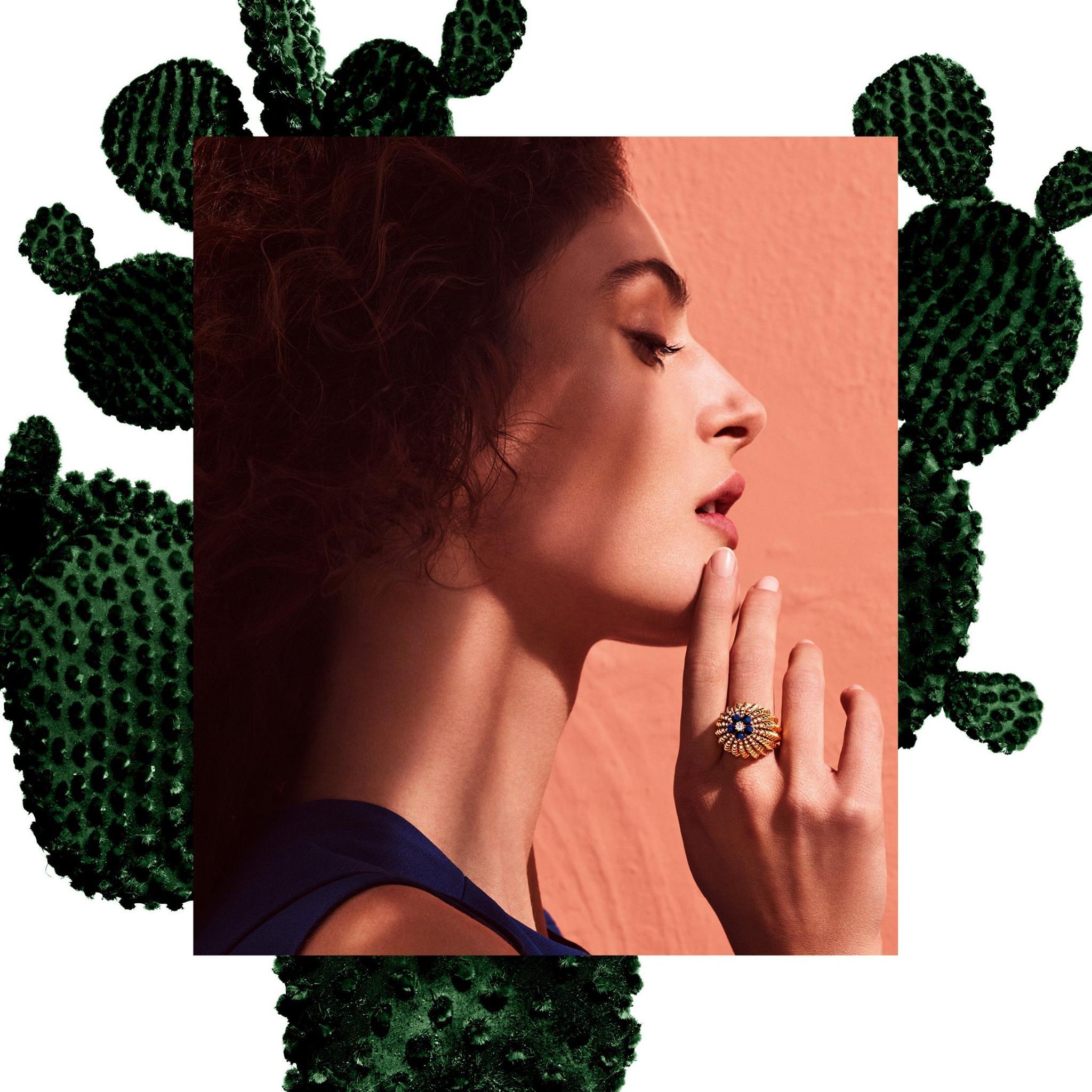 Cactus de Cartier, adaptarse y seducir…