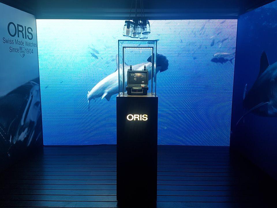 Oris cuida de los tiburones como especie