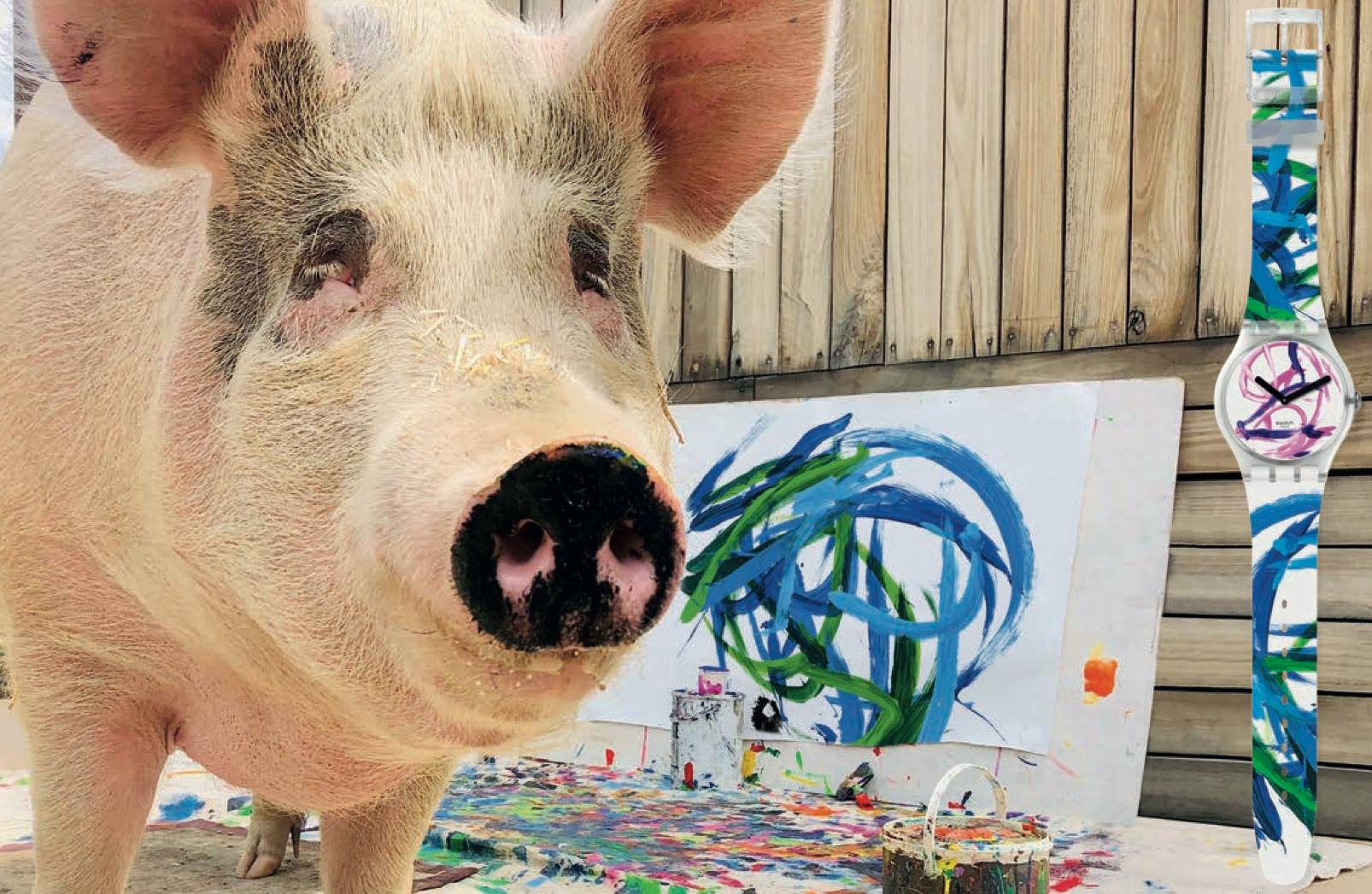 2019 1 Pintura Watches Swatch – Pigcasso World Reloj Cerdo DIHEWY29