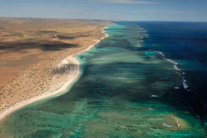 Rolex Perpetual Planet-Coral Reefs - Ocean Warming